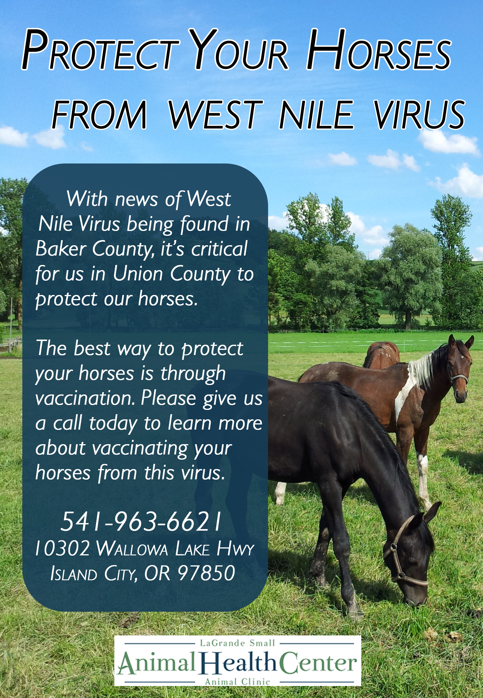 Protect Your Horses from West Nile