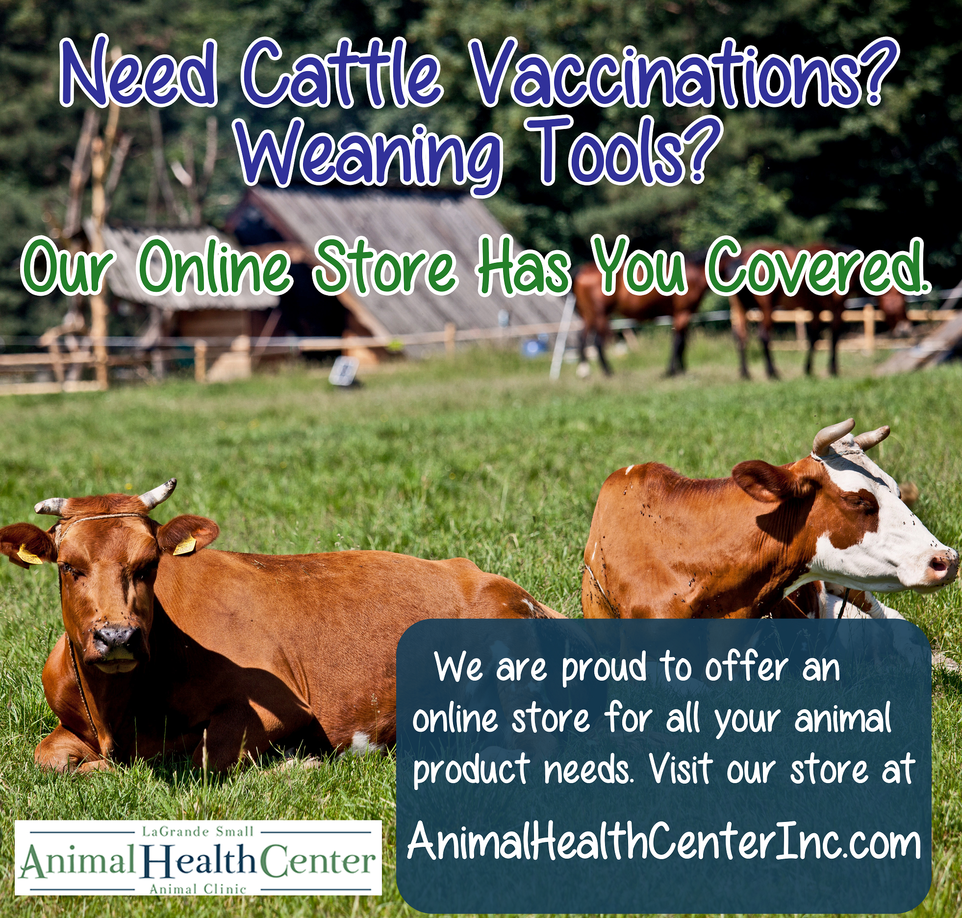 Cattle Weaning Products & More!
